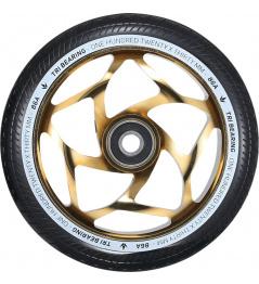 Blunt Tri bearing 120x30mm zlaté kolečko