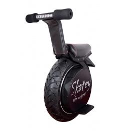Electric Skatey Balance Bike Pro